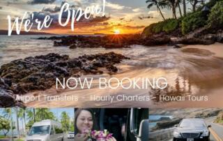 Now Booking Tours